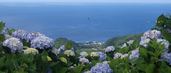 Flores Island looking west, Azores